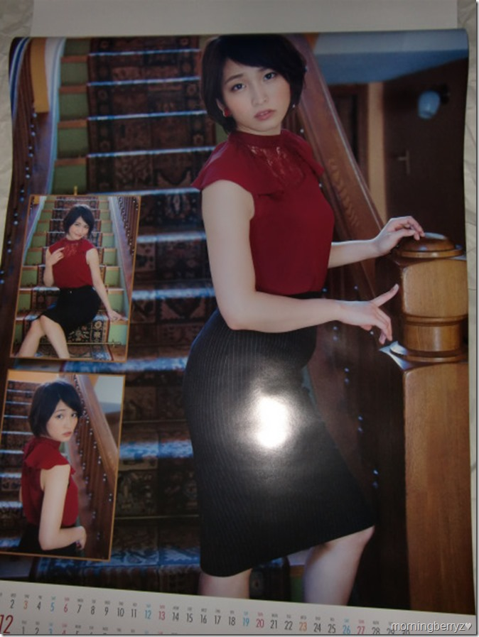 Okamoto Rei 2016 wall calendar (7)