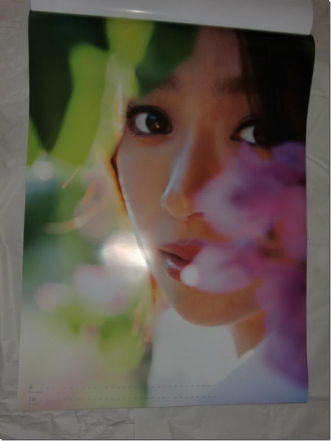 Fukada Kyoko 2016 wall calendar (6)