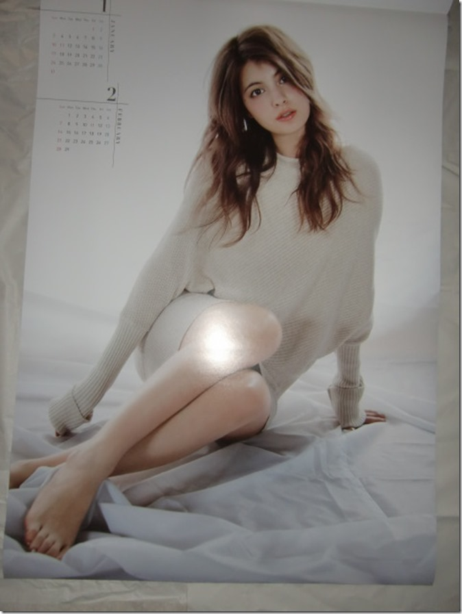 Maggy 2016 wall calendar (2)