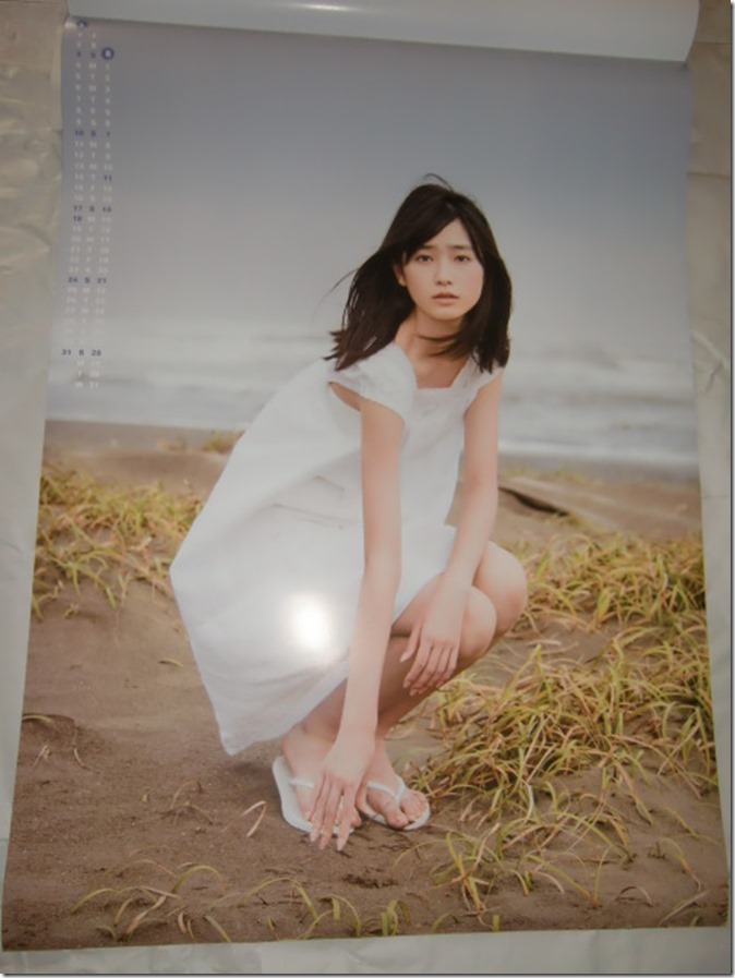 Takahashi Hikaru 2016 wall calendar (5)