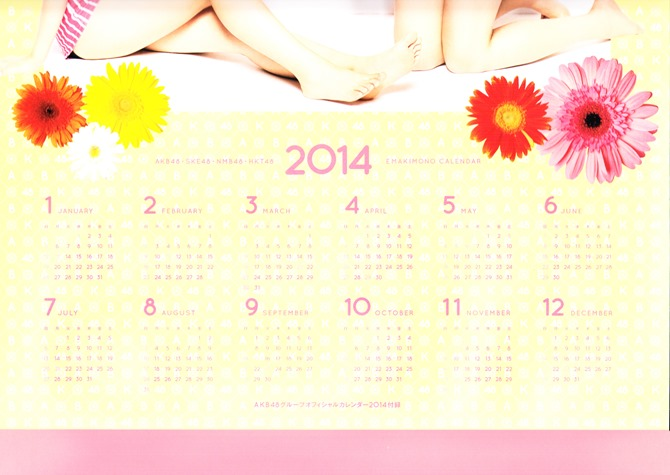 AKB48 2014 Official Calendar wall scroll (1)