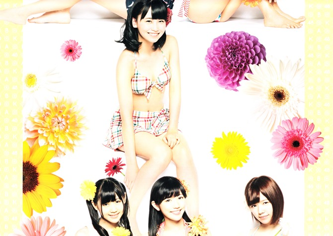 AKB48 2014 Official Calendar wall scroll (3)