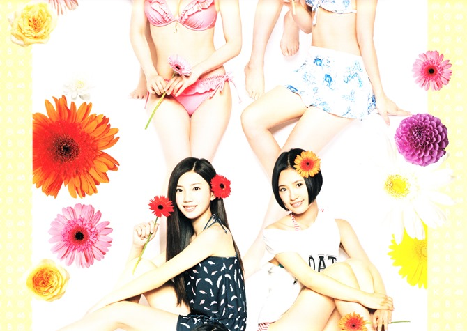 AKB48 2014 Official Calendar wall scroll (4)