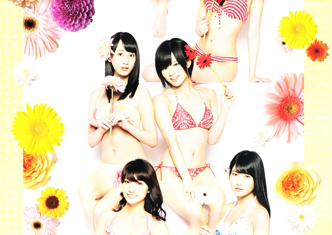 AKB48 2014 Official Calendar wall scroll (5)