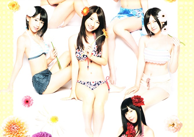 AKB48 2014 Official Calendar wall scroll (6)