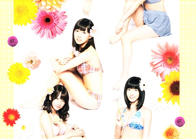AKB48 2014 Official Calendar wall scroll (7)