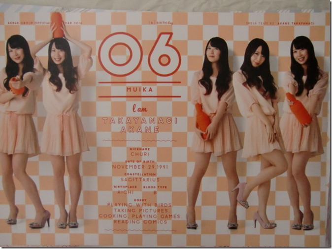 AKB48 Official 2016 Calendar (17)