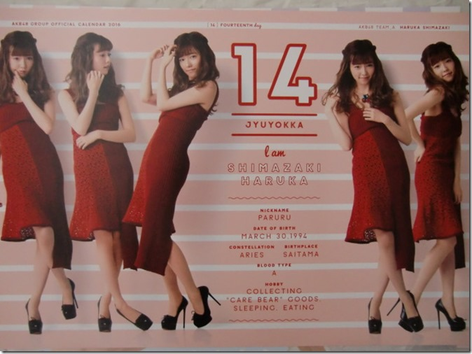 AKB48 Official 2016 Calendar (25)
