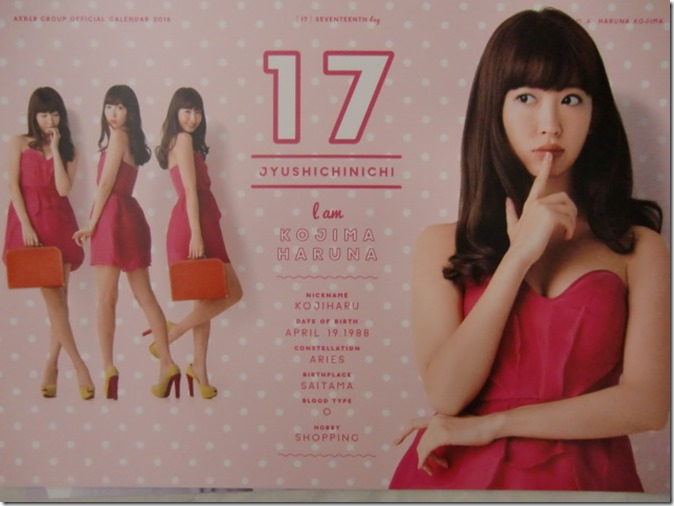 AKB48 Official 2016 Calendar (28)
