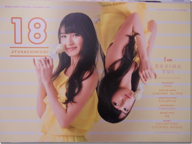 AKB48 Official 2016 Calendar (29)