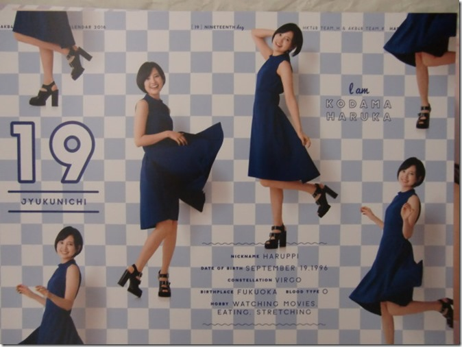 AKB48 Official 2016 Calendar (30)