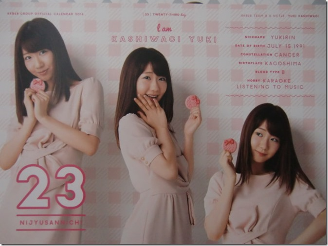 AKB48 Official 2016 Calendar (34)