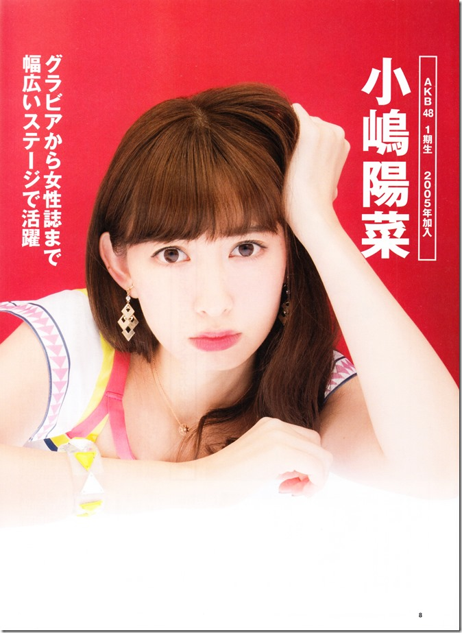 Nikkei BP Marketing AKB48 10th Anniversary Special Issue  (19)