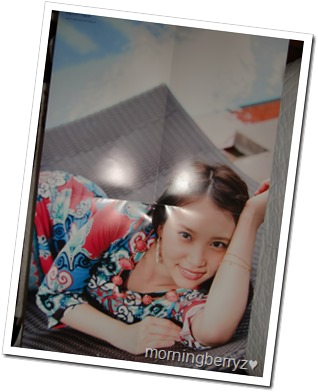Nagao Mariya Utsukushii saibou shashinshuu two-sided poster (side b)