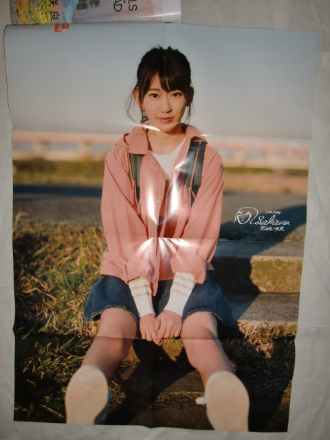 ENTAME June 2016 issue two side Miyawaki Sakura poster (b)