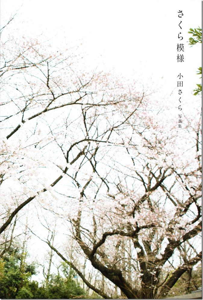 小田さくらファスト写真集「模様」 (8)