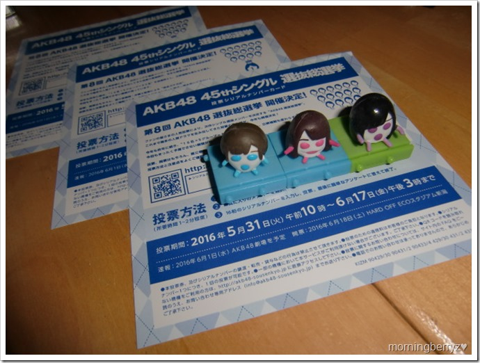 AKB48 8th sousenkyo voting pamphlets