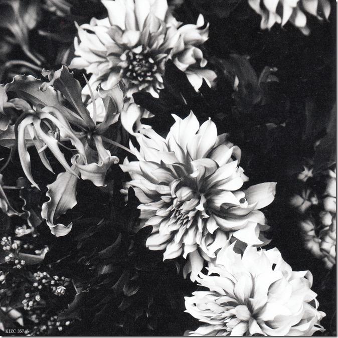 Maeda Atsuko Selfish album type B booklet (15)