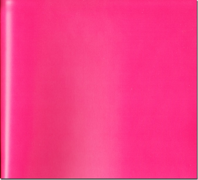 Ohara Sakurako V Limited Edition 64p booklet (33)